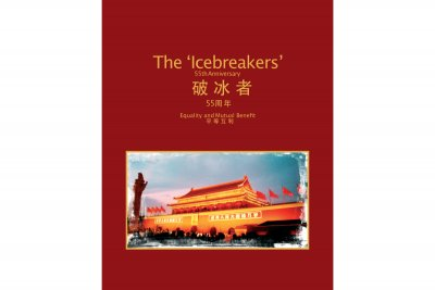 the-icebreakers