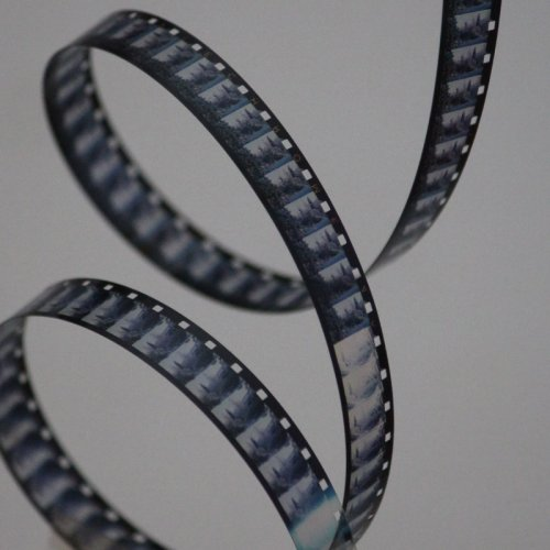 photograph of a coil of cine film