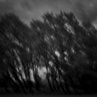P024-024   © Guy Woodland 2016