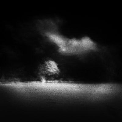 P026-003   © Guy Woodland 2016