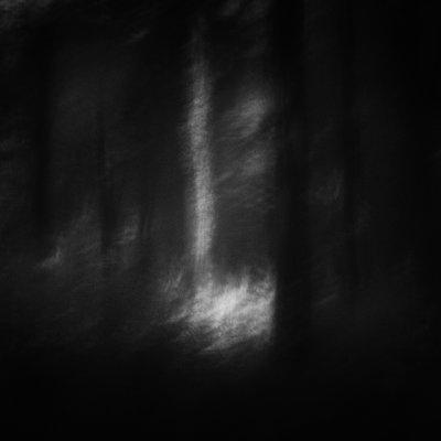 P038-004   © Guy Woodland 2016